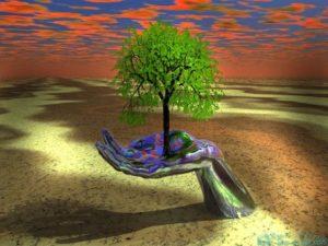Egy tenyérben fát tart